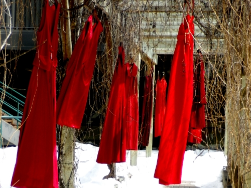 Red dresses hanging