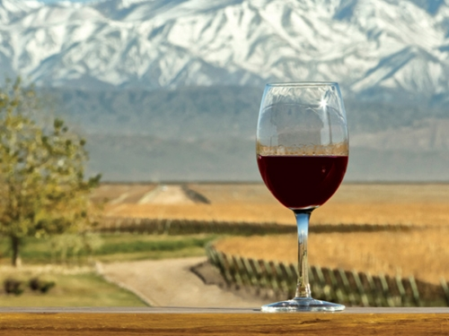 Wine glass with Andes in background