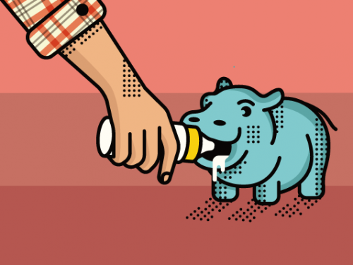 drawing of feeding a baby hippo