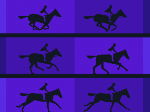 Muybridge motion horses