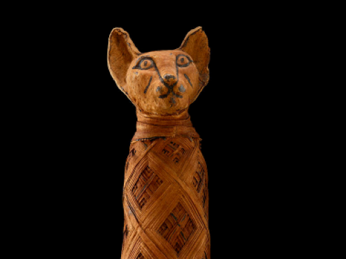Mummified cat sarcophagus