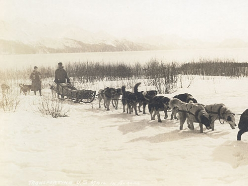Alaskan Dog Sled Mail Carrier, 1910
