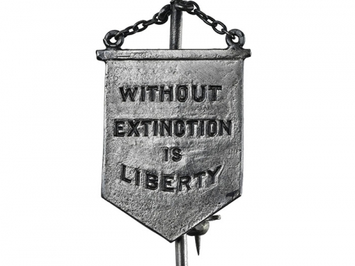 pin without extinction is liberty