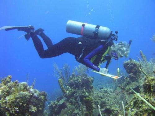 measuring ocean health