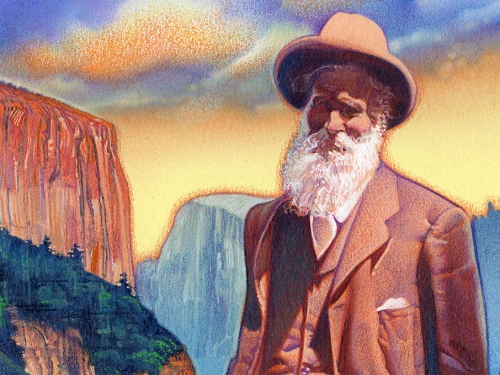 John Muir stamp art