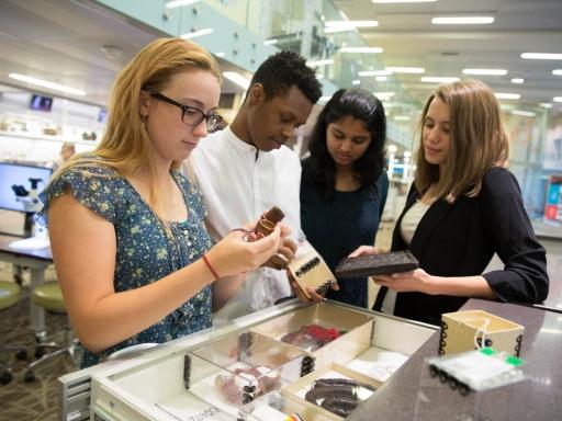 students examining interesting artifacts