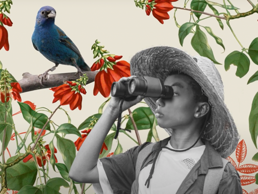 woman holding binoculars with a bird illustration in the background