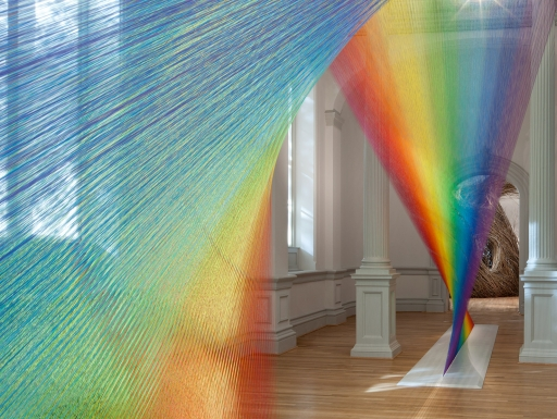 Plexus A1 by Gabriel Dawe, photo Ron Blunt