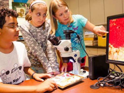 kids look at monitor.