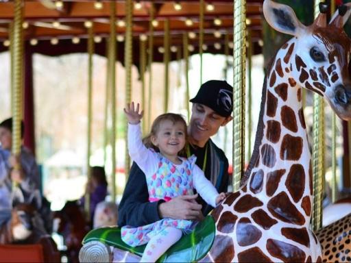 child on carousel giraffe