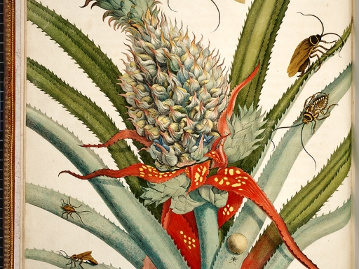 tropical insects and plant
