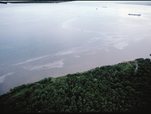 Shoreline seen from above