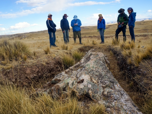 Research team with unearthed fossil tree