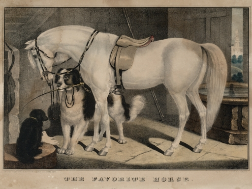 lithograph of horse with dogs.