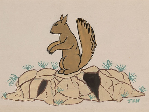 Squirrel n.d. Painting