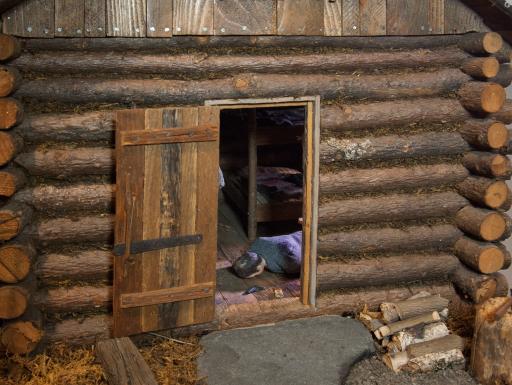 Nutshell Studies - cabin