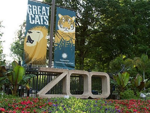 Zoo entrance.
