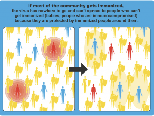 Graphic showing herd immunity
