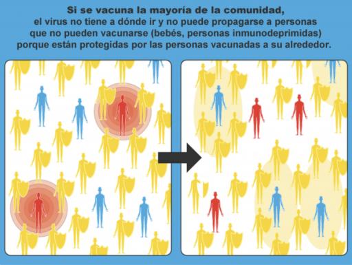 Community Immunity infographic
