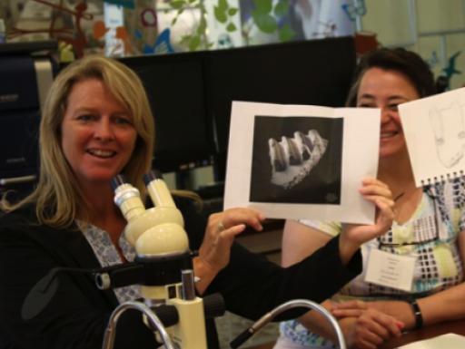 Teachers using microscopes at education event.