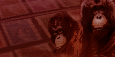 Stylized orangutan illustration.