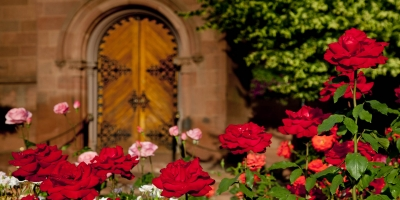 Castle door and rose garden