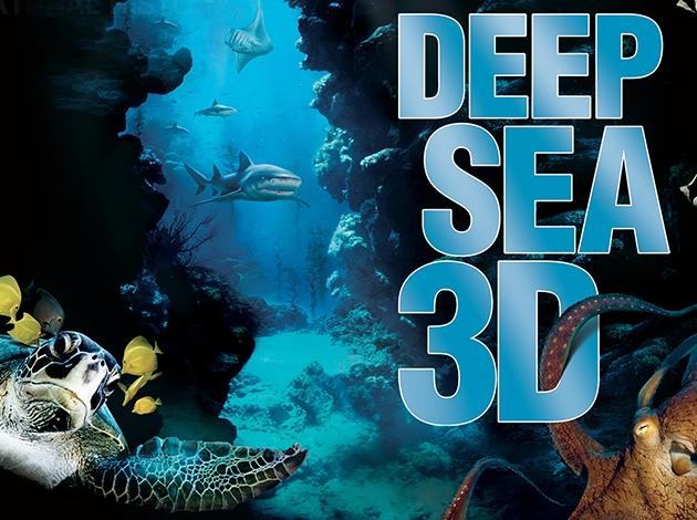 Deep Sea 3D Image