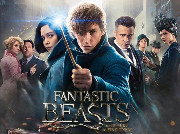 Fantastic Beasts and Where to Find Them Image