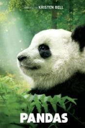 Pandas Poster