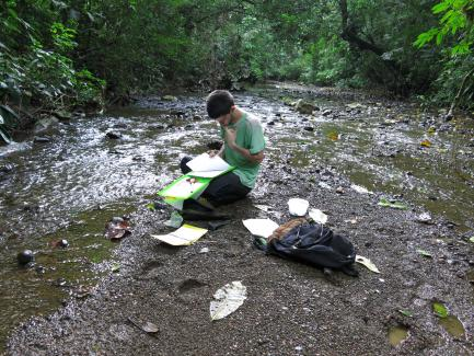 Researchers taking notes on riverbank