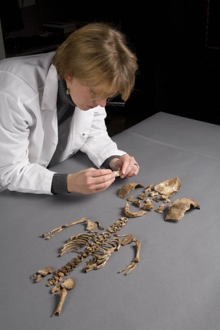 Karin Bruwelheide with skeleton