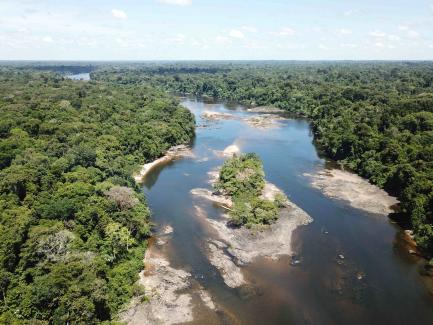 aerial view of trees and river