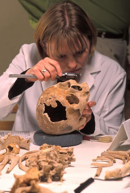 Karin Bruwelheide with skull