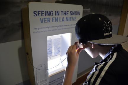 Boy reads interactive screen