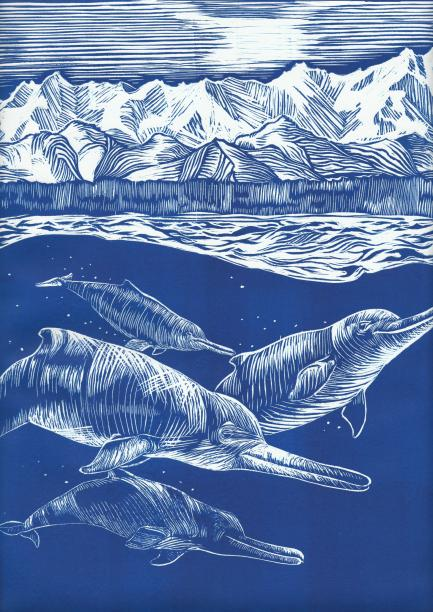 Artist's linotype of dolphins