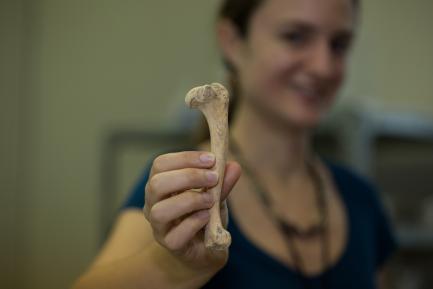 Sharpe holding bone