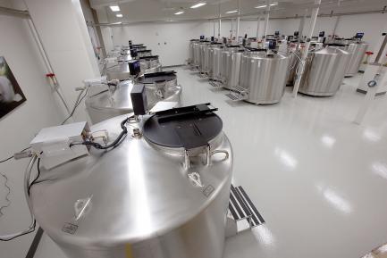 Stainless Steel Biorepository Tanks