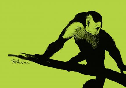 Ink drawing of monkey