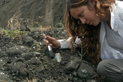 woman uncovering shark tooth at geologic site