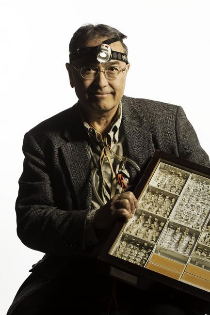 Curator wearing miner's light holding box of specimens