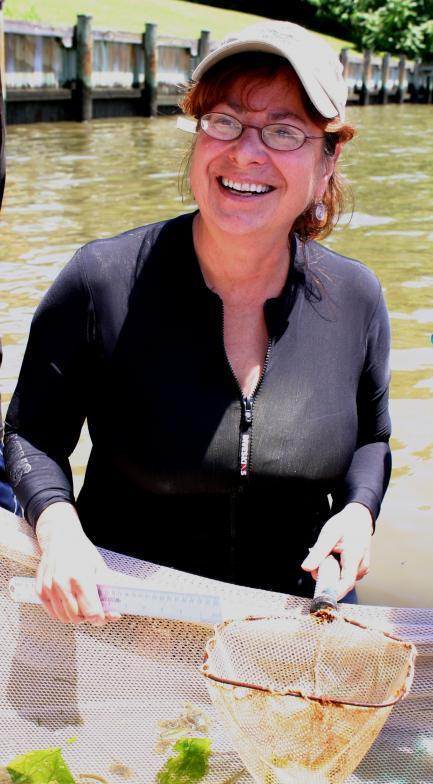 Photo of scientist Denise Breitburg