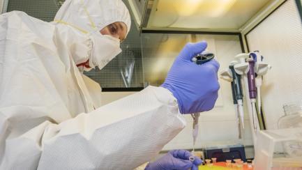scientist preparing ancient DNA samples for analysis