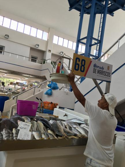 Man hangs sign in fish market