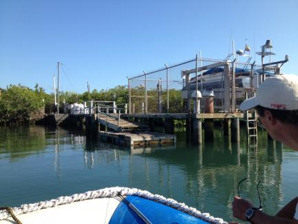 Franklin Bay Santa Cruz