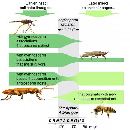 poster showing research conclusions