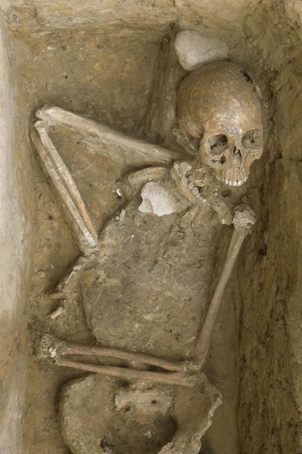 Boy's skeleton