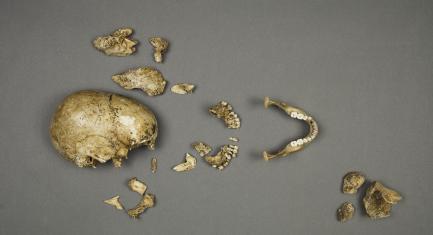 Human Remains, Jamestown