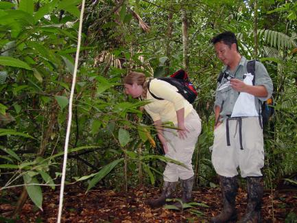 researchers in field