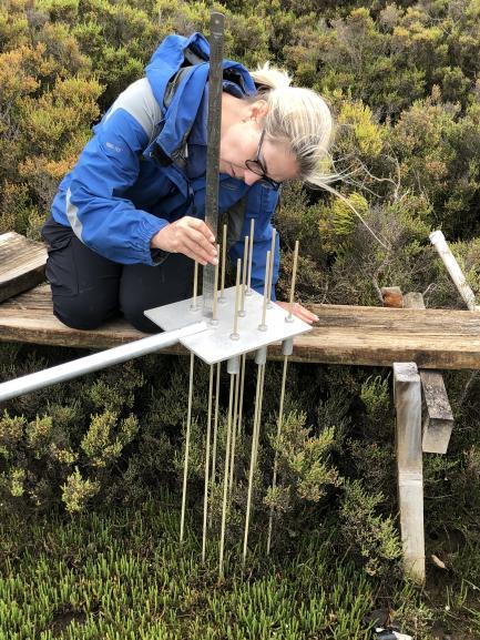Scientist Studying Carbon Storage