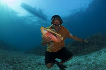 diver with conch